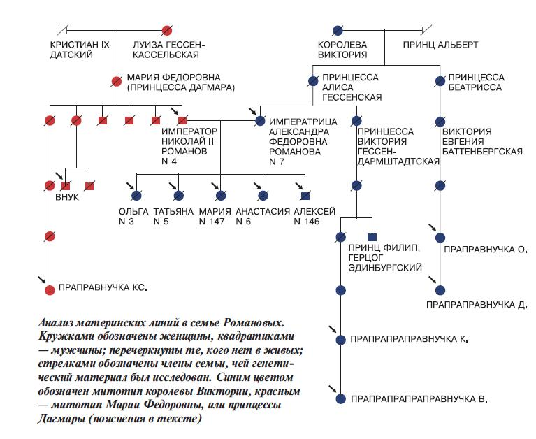 Какие трудности возникли у ученых при изучении ДНК царской семьи Романовых